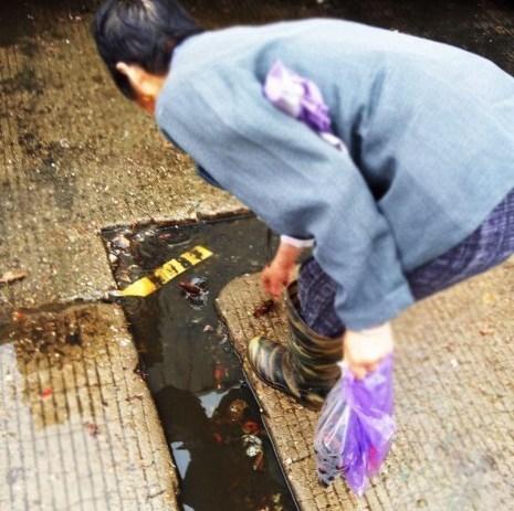 暗拍武汉商贩公厕内加工死小龙虾