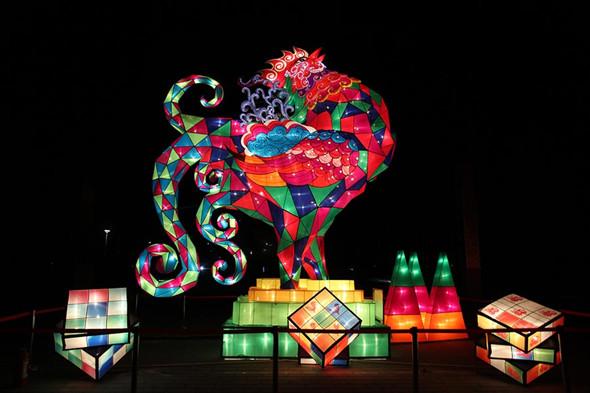 Lanterns light up Beijing rose park for Spring Festival
