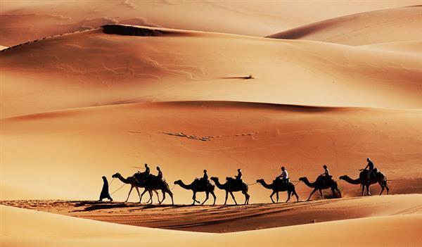撒哈拉沙漠起源:都是人类惹的祸