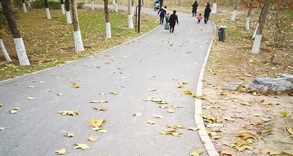حديقة تشاو يانغ ي بكين