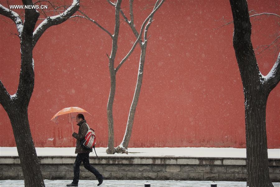 Beijing embraces snowfall (2)
